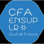 CFA ENSUP LR bleu sans fond